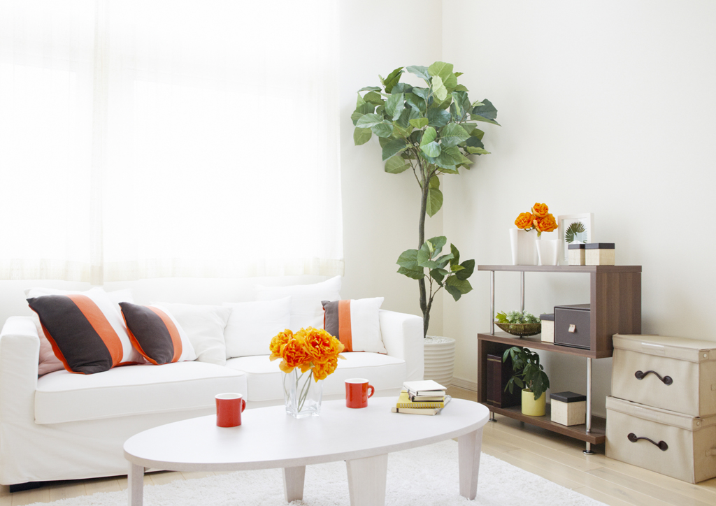 Moderní obývák s kytkami