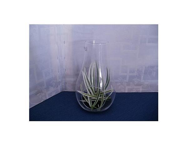 BANQUET Váza skleněná ROSEA 29 cm