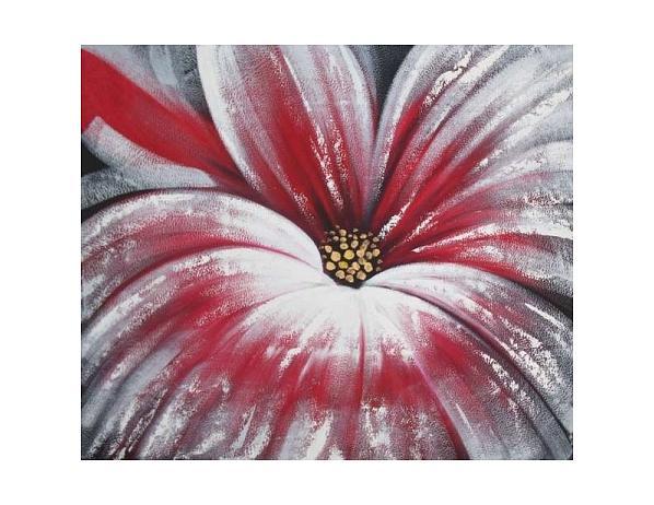 Obraz – Krásný květ