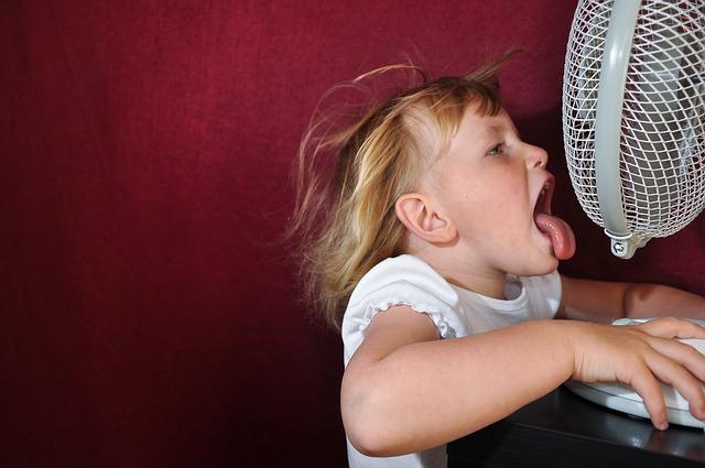 Průměrná teplota v Česku se rok od roku zvyšuje. Jak chránit domácnost před horkem?