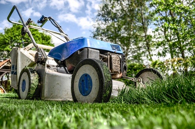 4 základní kroky k údržbě vyživeného a zeleného trávníku v suchém létě