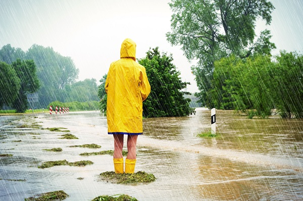 Obnova zahrady po přívalových deštích a povodních? Jde to, ale chce to čas a vaši pomoc