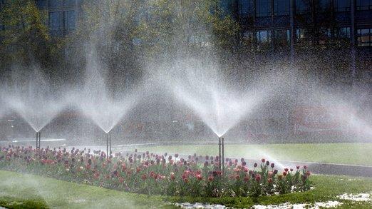 Závlahové systémy: Usnadní zalévání zahrady nebo terasy. Jaké jsou výhody jednotlivých řešení?